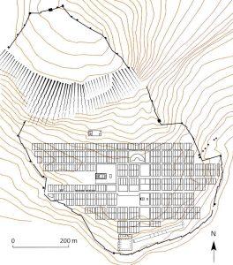 Suburbios en ciudades de la Antigüedad. Priene.