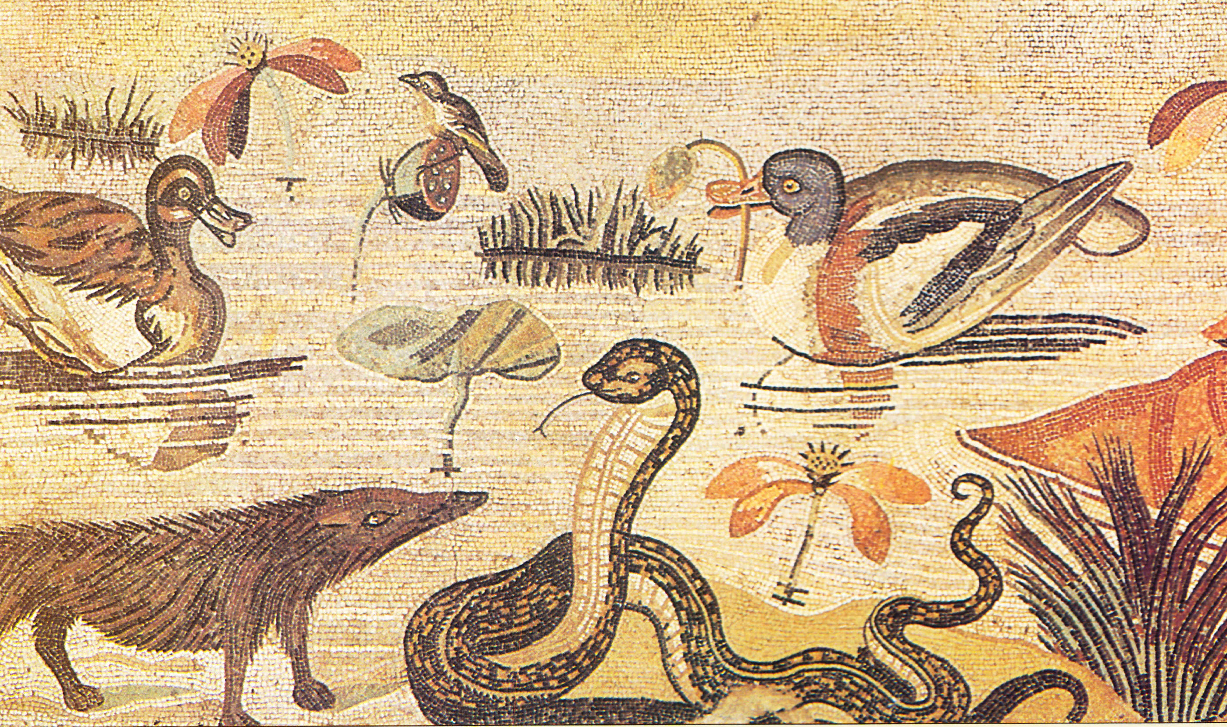 Egipto Antiguo 61 y Ptolomeo XII 4