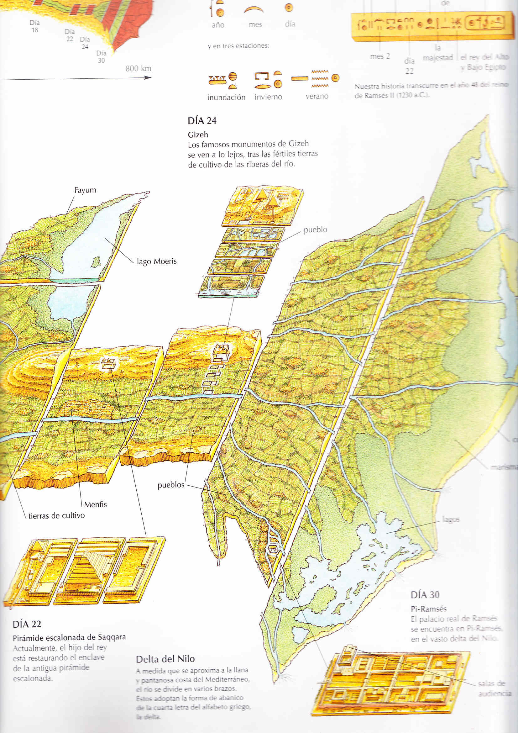Egipto antiguo 38 y Ptolomeo V Epifanes 6 Egipto antiguo 38 y Ptolomeo V Epifanes 6 Egipto antiguo 38 y Ptolomeo V Epifanes 6
