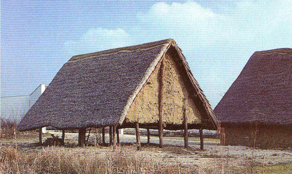 La revolución del Neolítico Generalidades