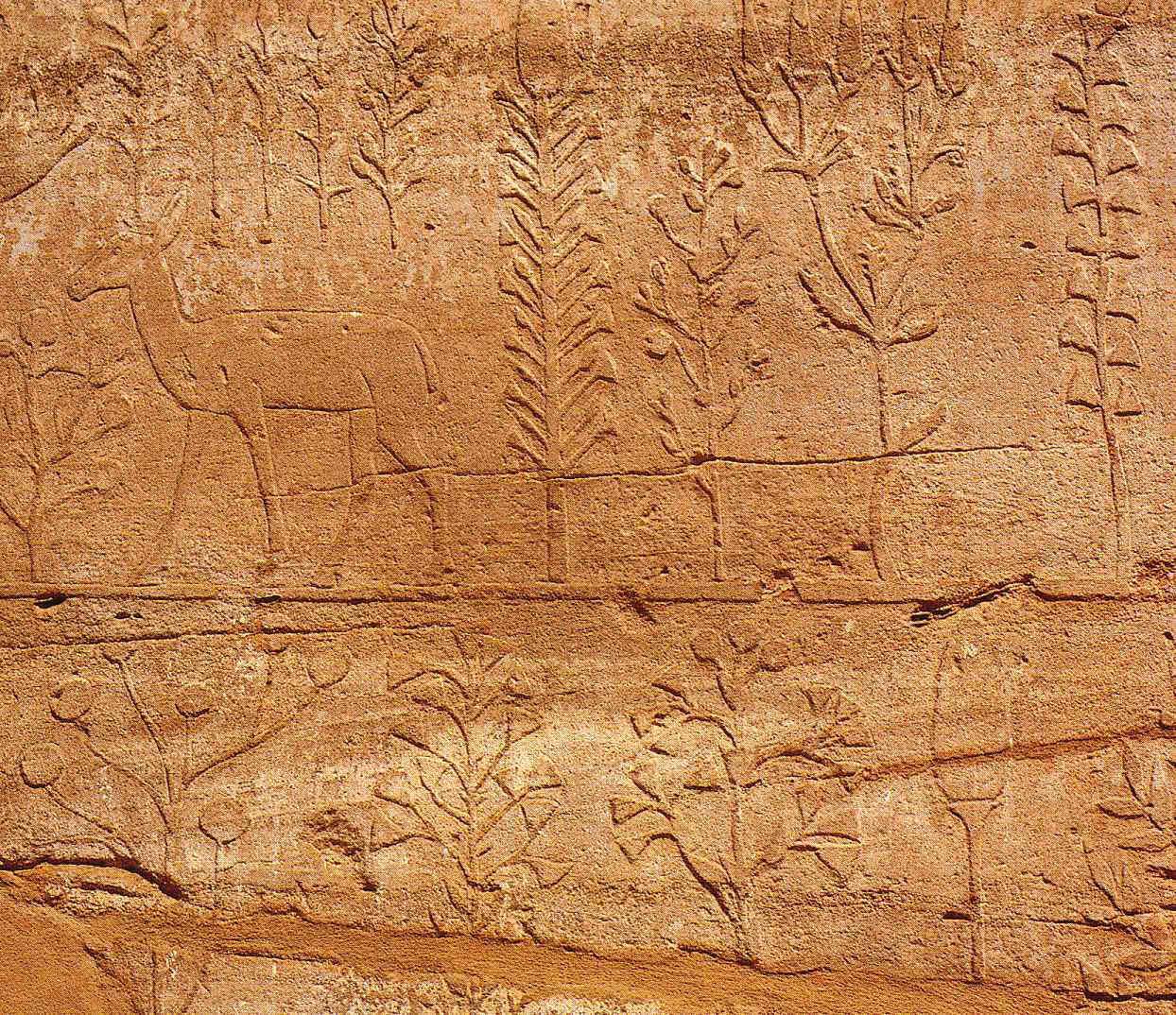 Karnak c o los otros