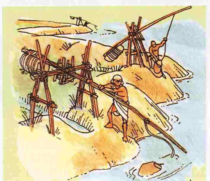 La vida en el antiguo Egipto Regadío