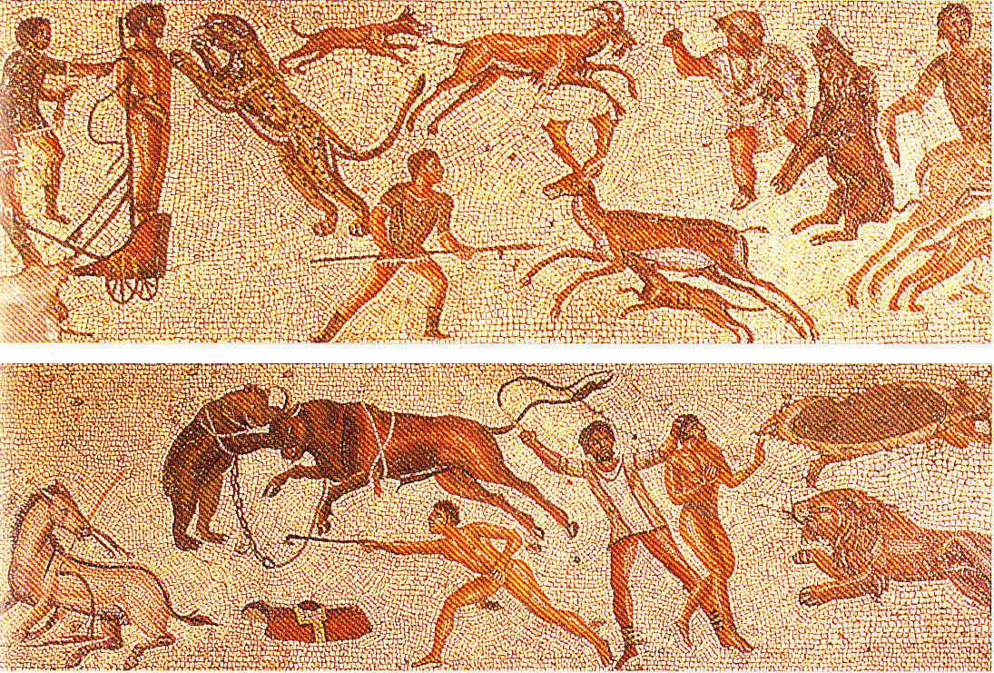 Egipto Antiguo 210 Al Anfiteatro o Coliseo de Roma