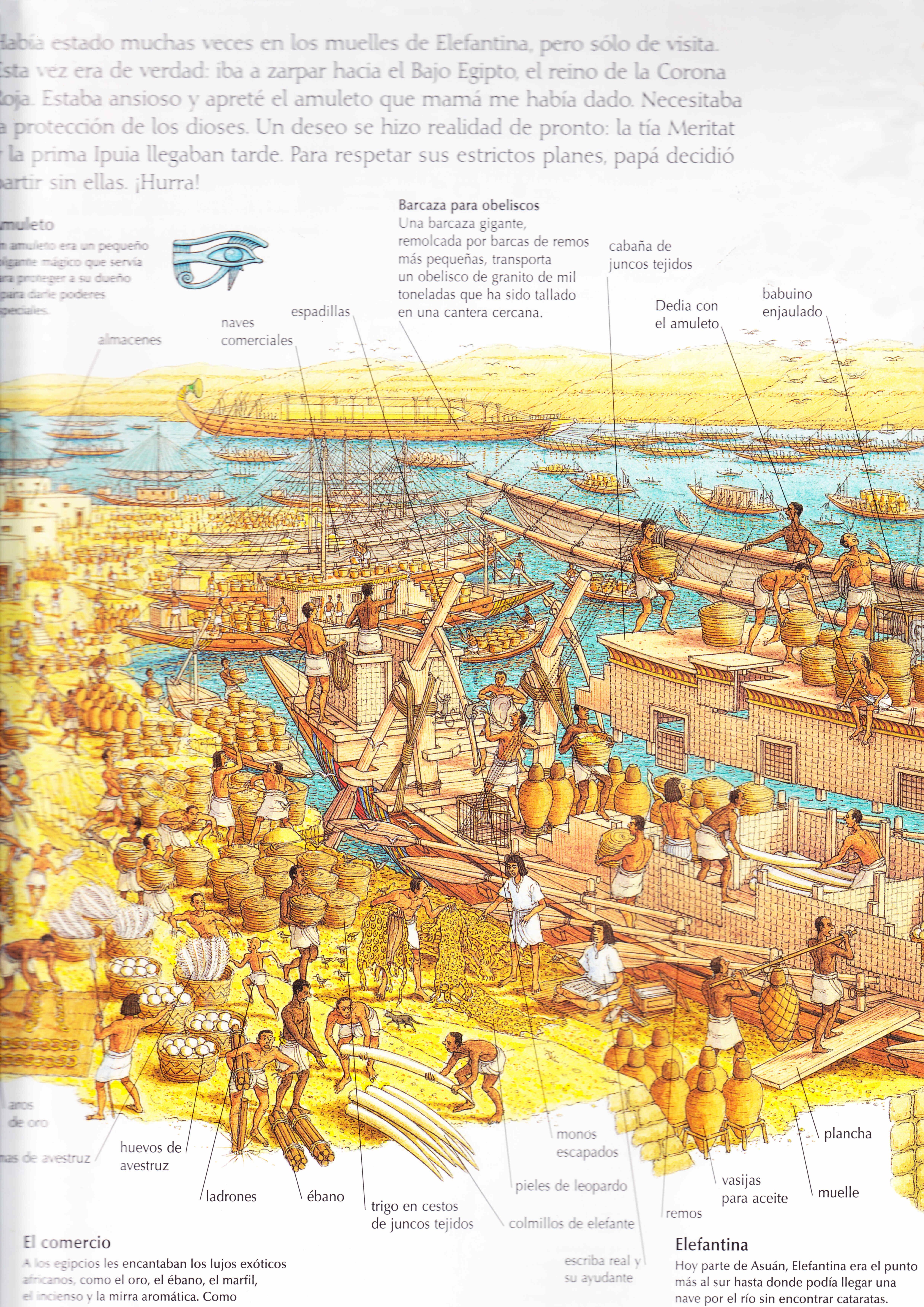 Egipto antiguo 29 y Ptolomeo III Evergetes 5