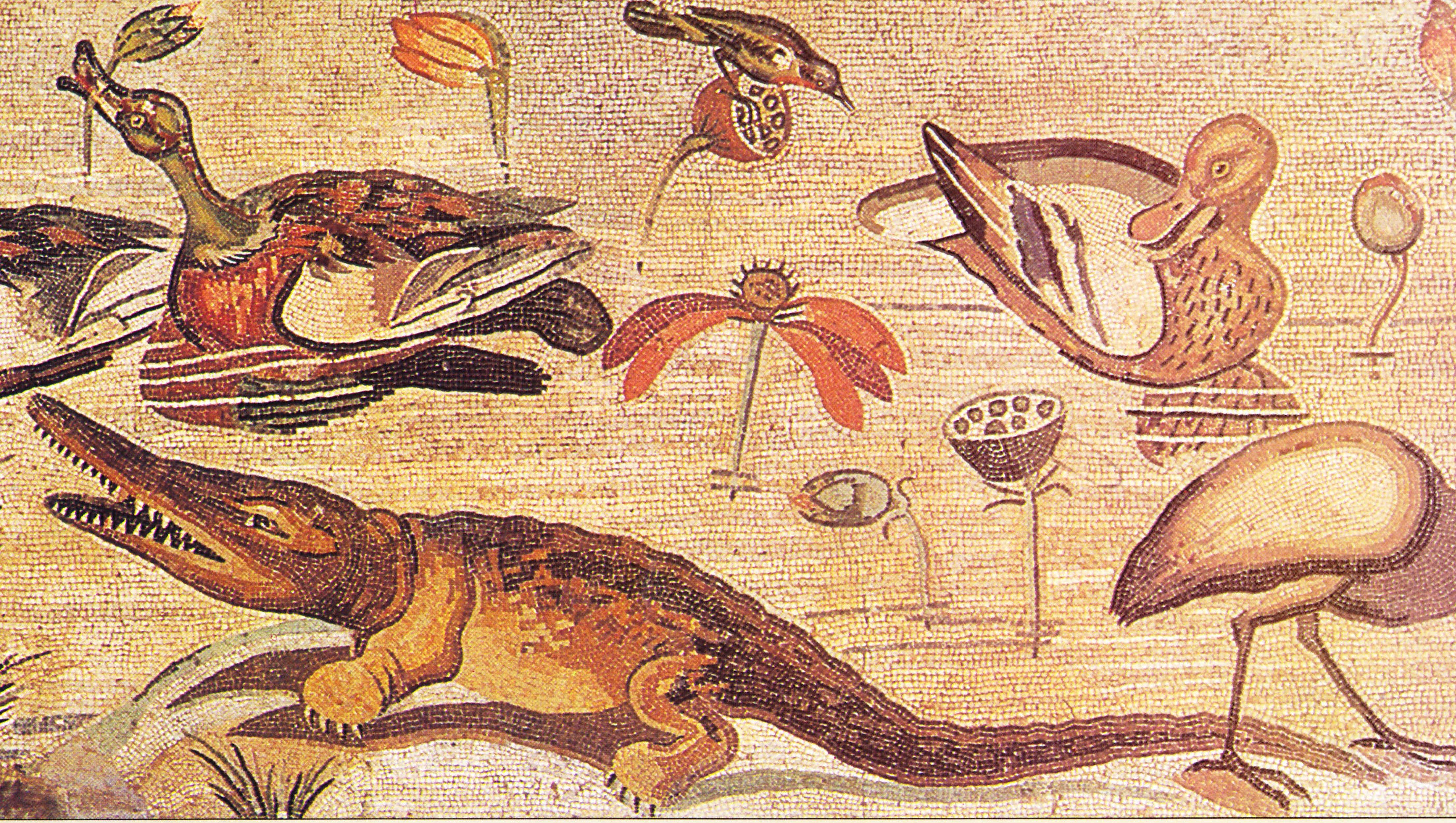 Egipto Antiguo 62 y Ptolomeo XII 5