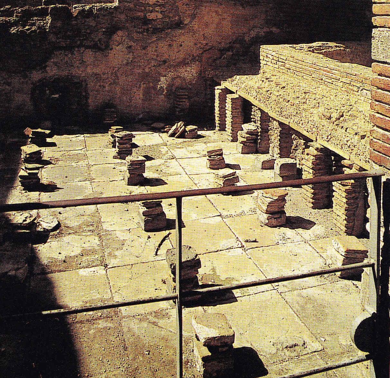 Egipto Antiguo 201 Nuevas Leyes de Julio César