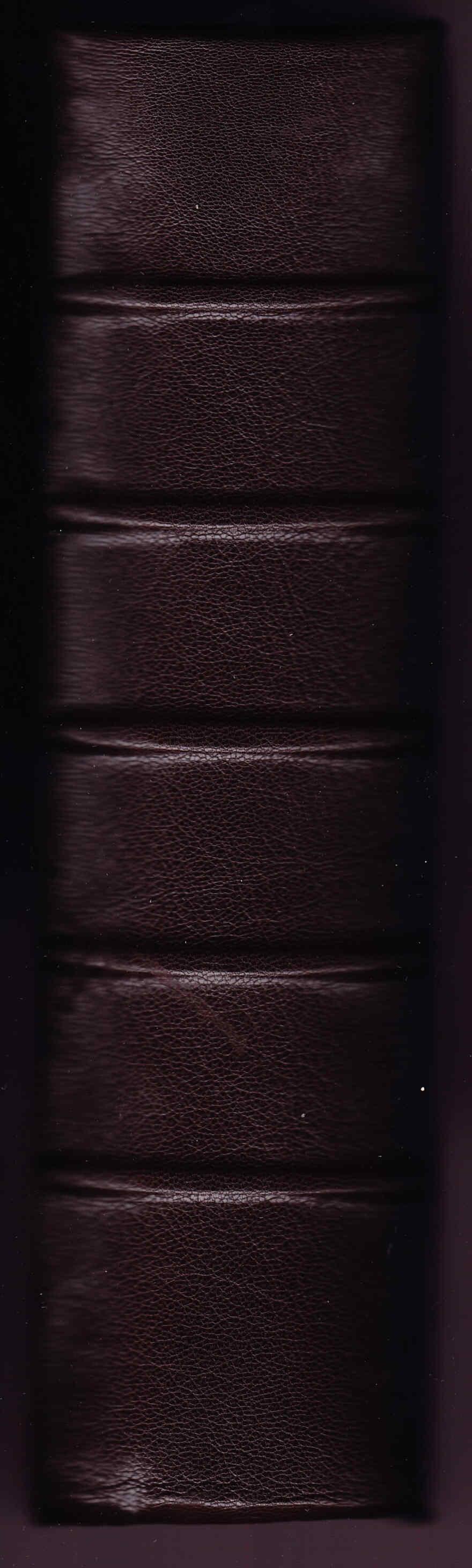 Restauración de libro antiguo y Diccionario inglés
