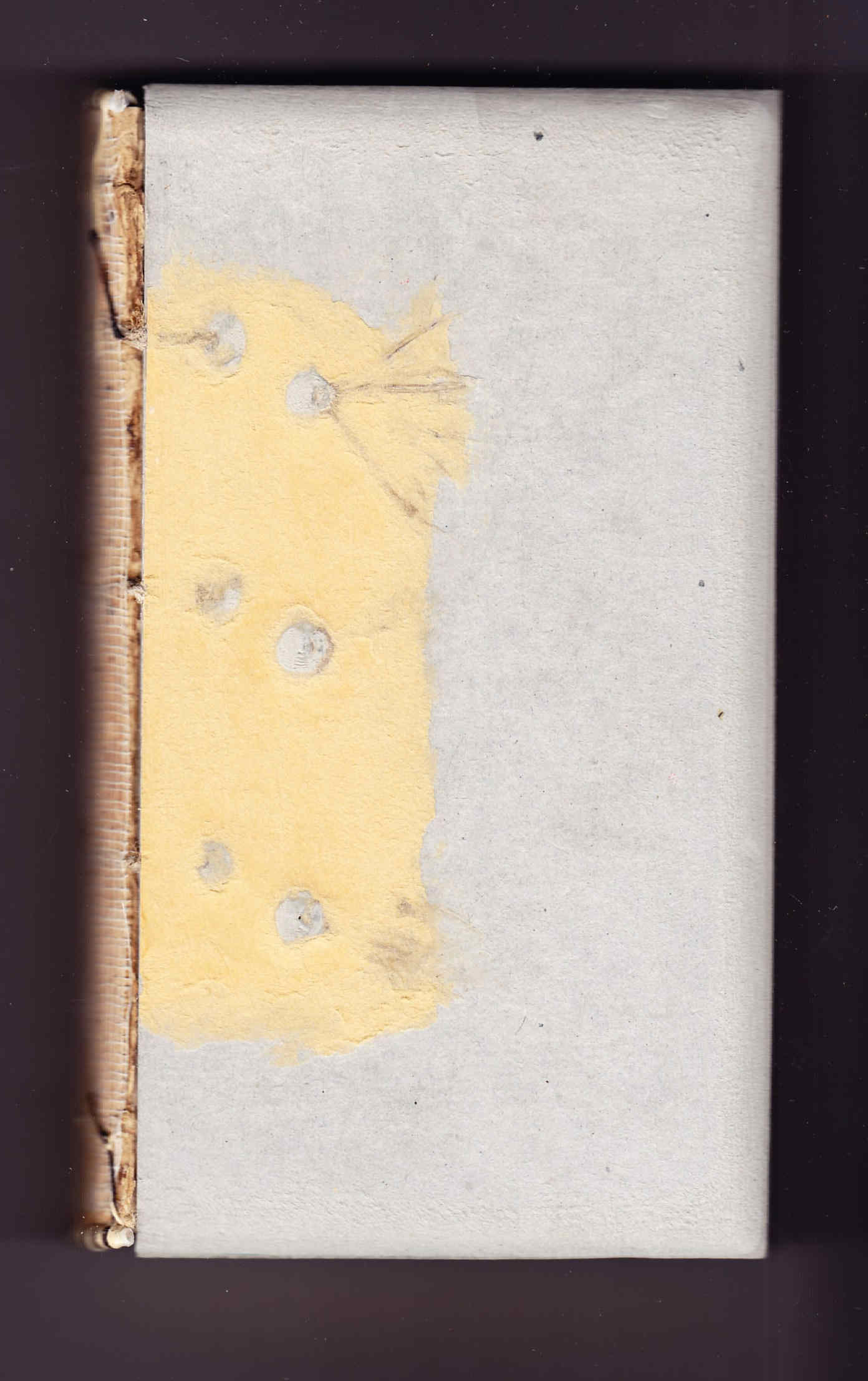 Restauración de libro antiguo y Catulo
