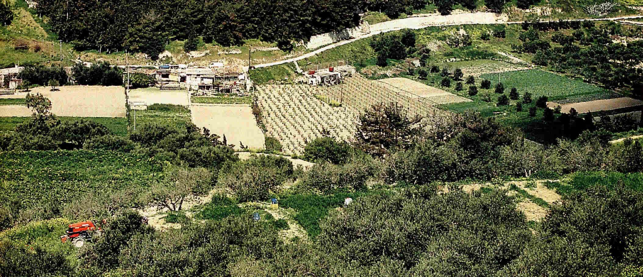 Los minoicos de Grecia clásica 3