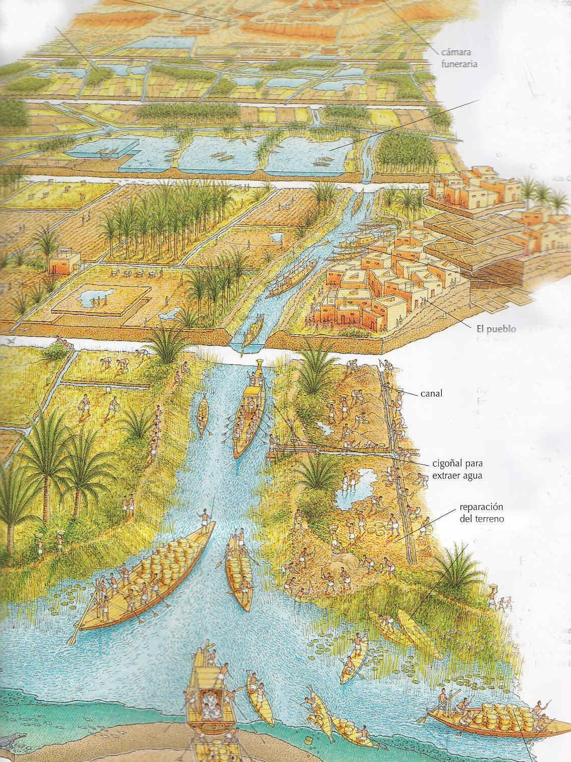 Egipto antiguo 26 y Ptolomeo III Evergetes 2
