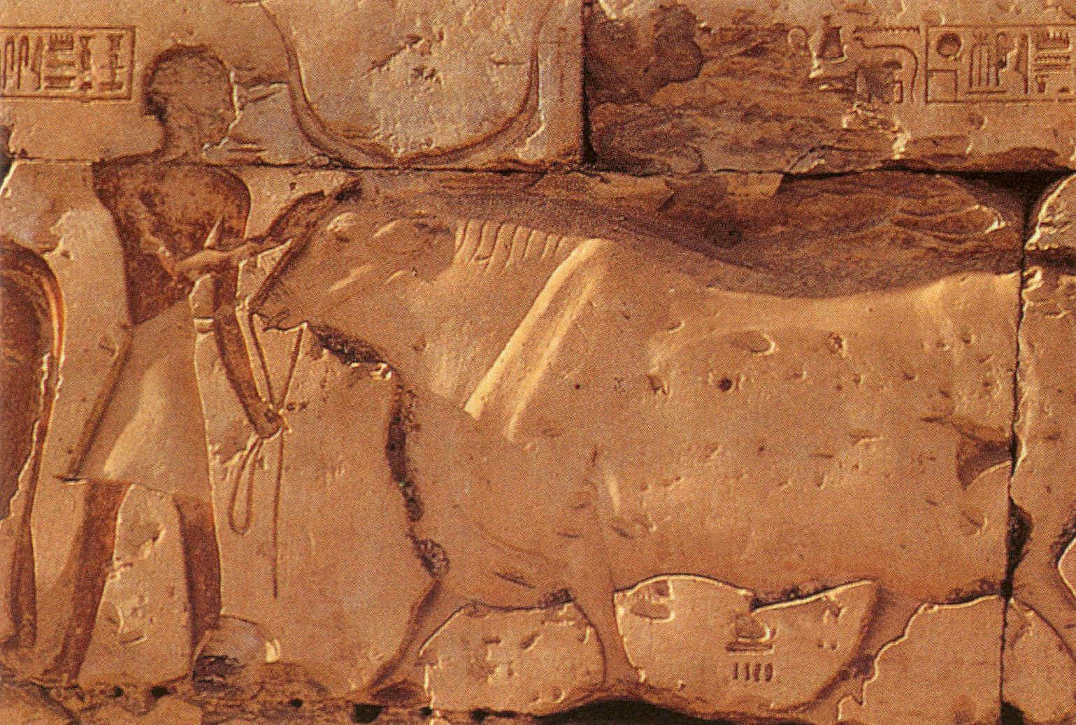 La vida en el antiguo Egipto Arte