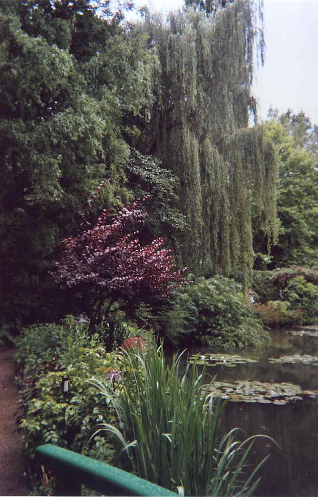 Giverny El Edén de Claude Monet La Pintura 164